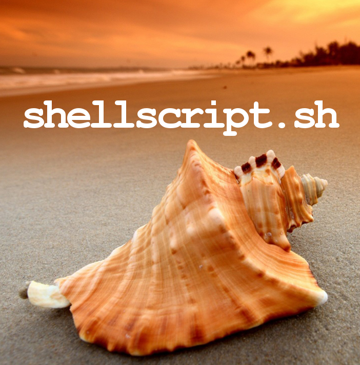 Linux shell script variable assignment